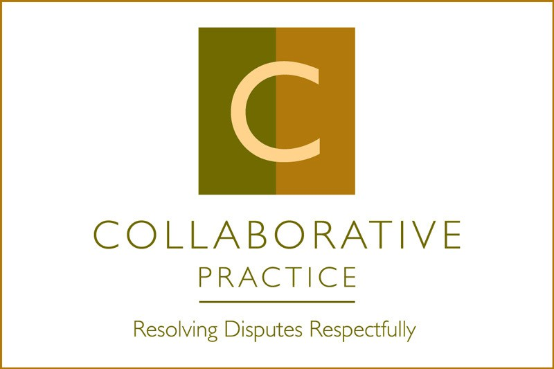 Lisa Zonder To Serve As Chair Of Collaborative Practice California